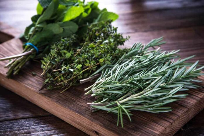 Herbal Practitioners