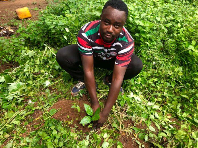 Salaga-South NDC
