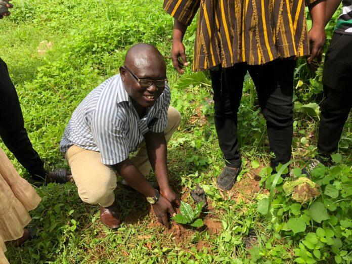 Salaga-South NDC joins Green Ghana Initiative